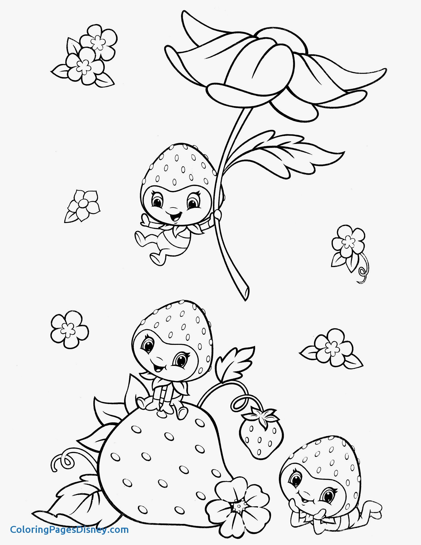 1700x2200 Raspberry Coloring Pages Lovely Strawberry Shortcake Coloring Page
