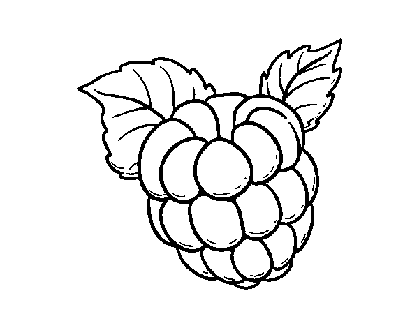 600x470 Super Cool What Color Is Raspberry Coloring Page