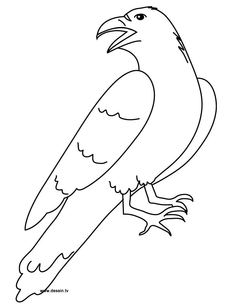 768x1024 Coloring Raven