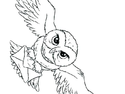 520x393 Coloring Pages Of Harry Potter Harry Potter Coloring Pages Plus