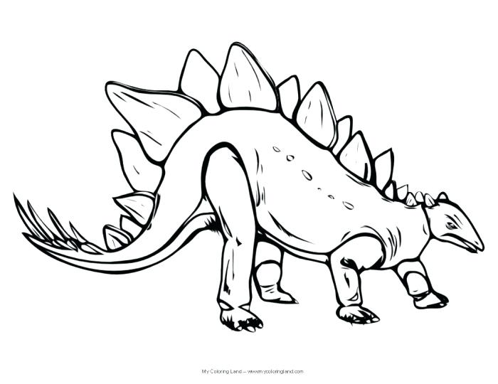 700x540 Stegosaurus Coloring Page Realistic Dinosaur Coloring Pages