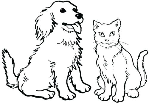 500x344 Kitten Coloring Page Cute Kitten Coloring Pages Cat And Kitten