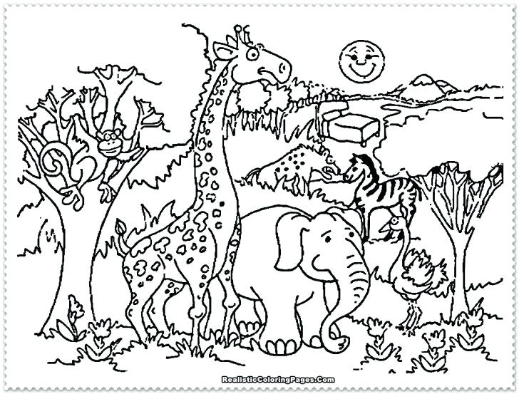 728x553 Safari Animals Coloring Pages Printable Pictures Ostrich Runs