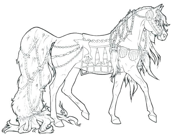 600x476 Real Animal Coloring Pages Professional
