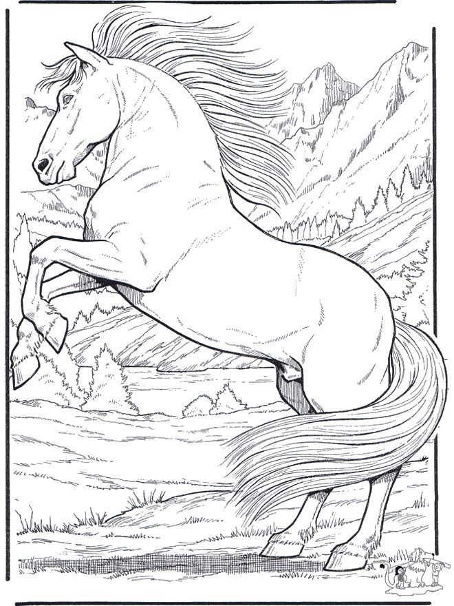 660x880 Realistic Animal Coloring Pages Labels And Printables