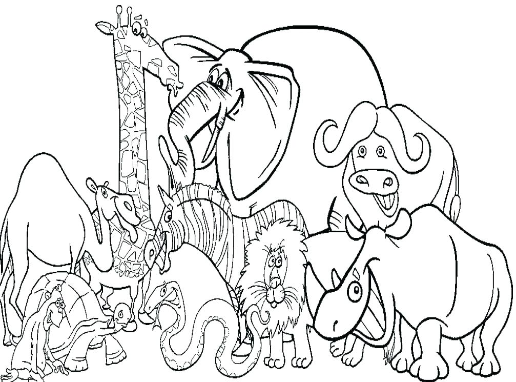 1007x745 Coloring Animal Pages Zoo Animal Coloring Pages To Print Animal