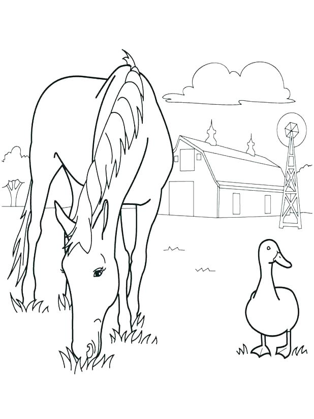 618x824 Coloring Pages Of Farm Animals Realistic Animal Coloring Pages