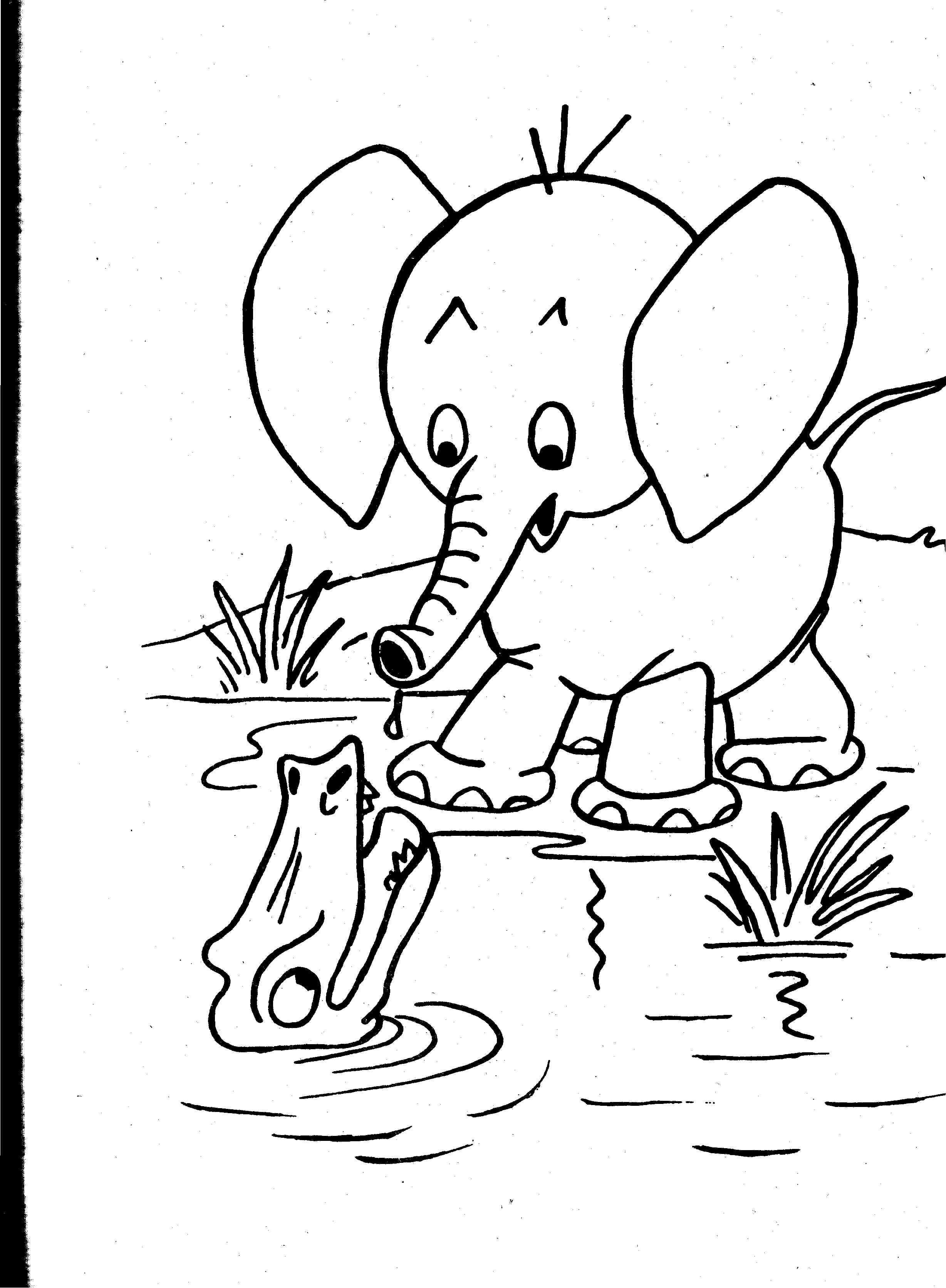 2456x3344 Colouring Pages Of Wild Animals Elvisbonaparte Coloring
