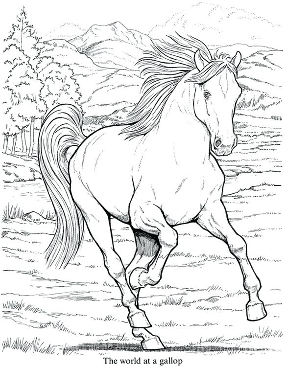 584x750 Cool Animal Coloring Pages Realistic Animal Coloring Pages Hard