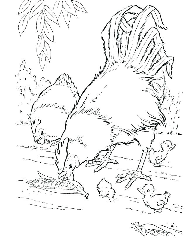 670x820 Free Printable Animal Coloring Pages Baby Farm Animals Coloring