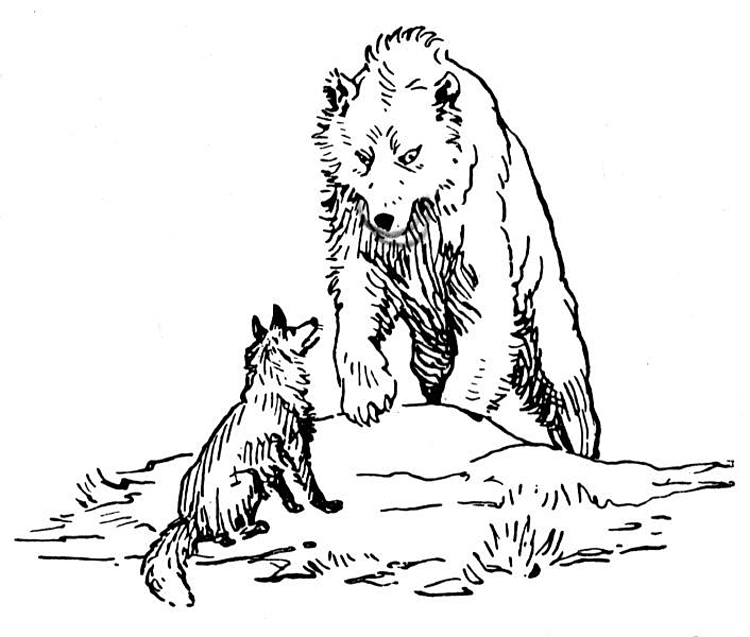 750x637 Grizzly Bear Coloring Pages
