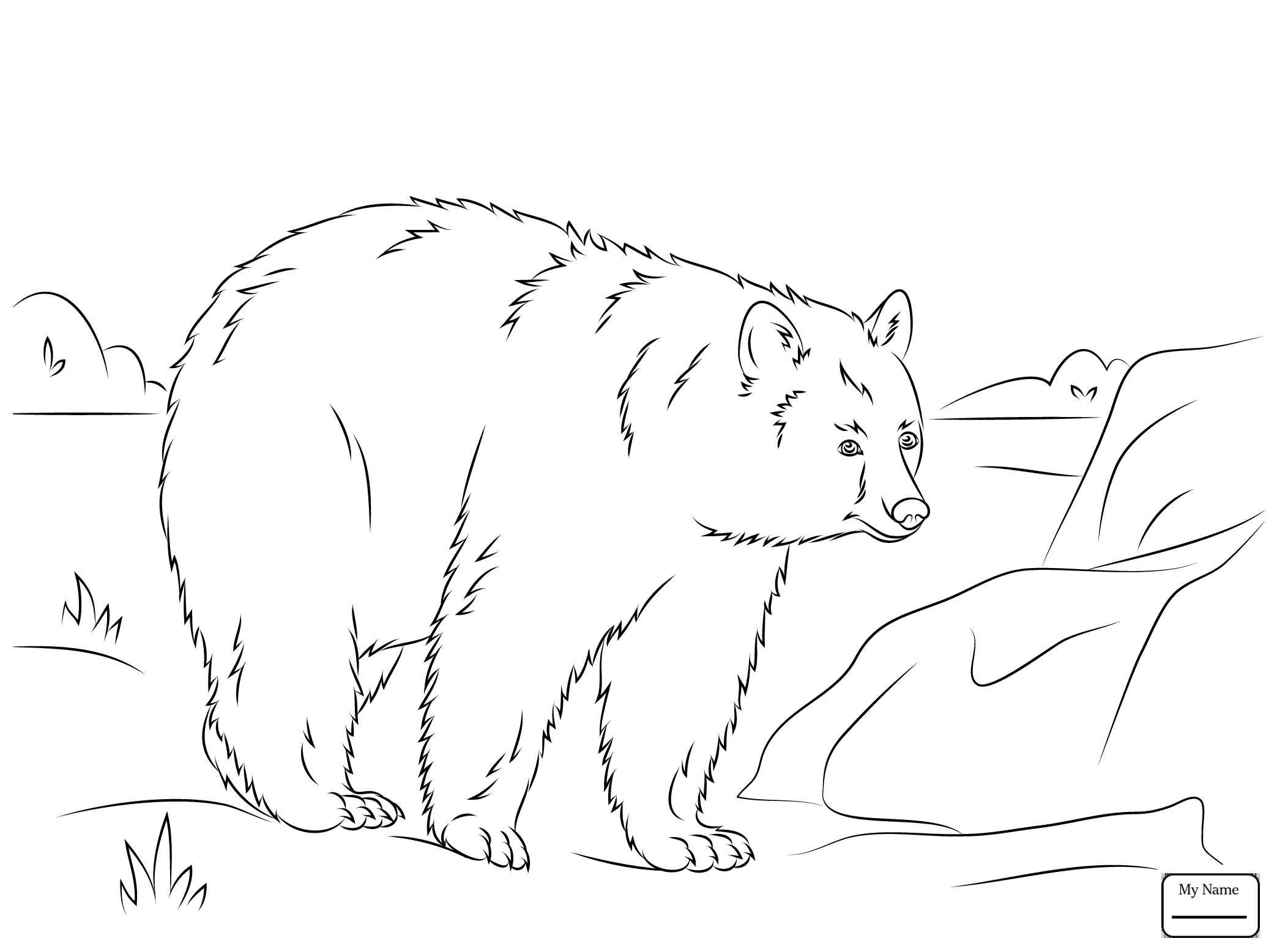 2087x1557 Awesome American Black Bears Coloring Pages Collection Printable