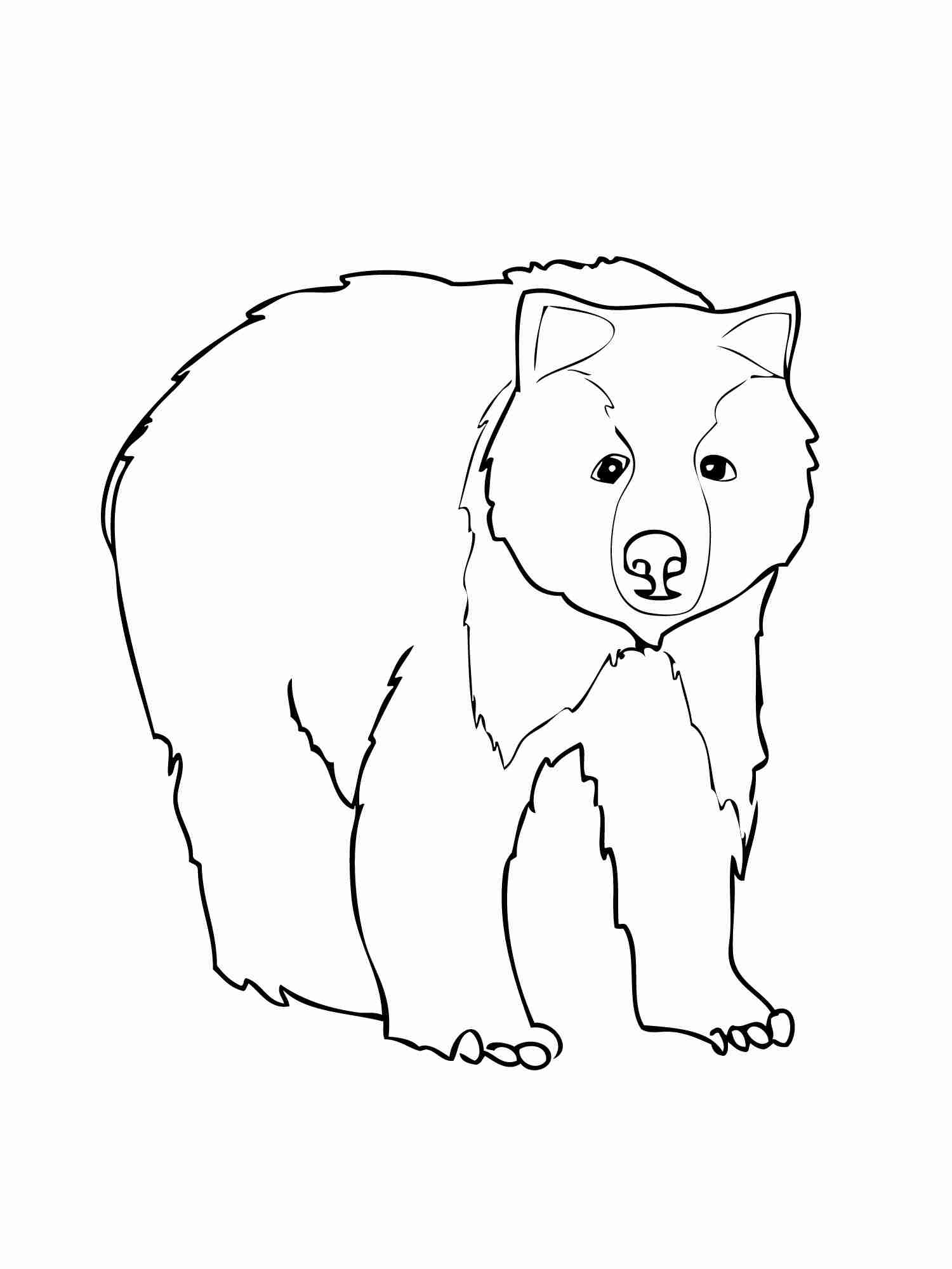 1500x2000 Realistic American Black Bear Coloring Page Free Printable Bright