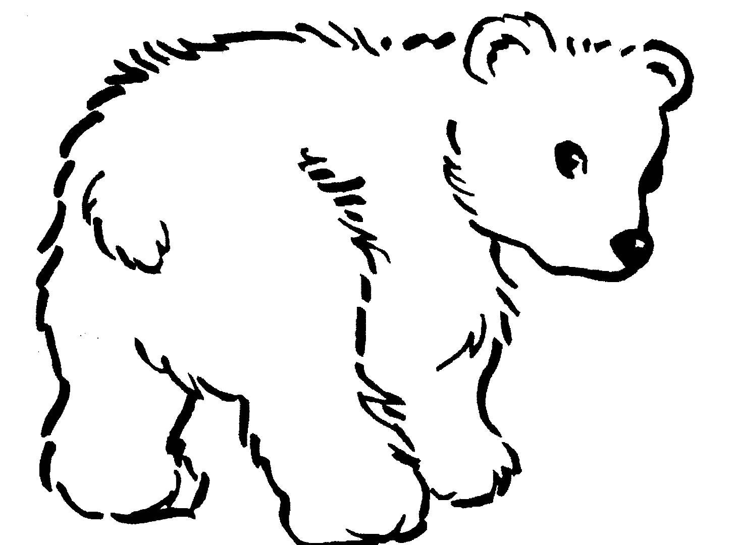 1464x1080 Realistic Bear Coloring Pages New Free Printable Teddy Bear
