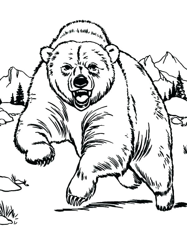 600x727 Black Bear Coloring Page Black Bear Coloring Page Coloring Bear