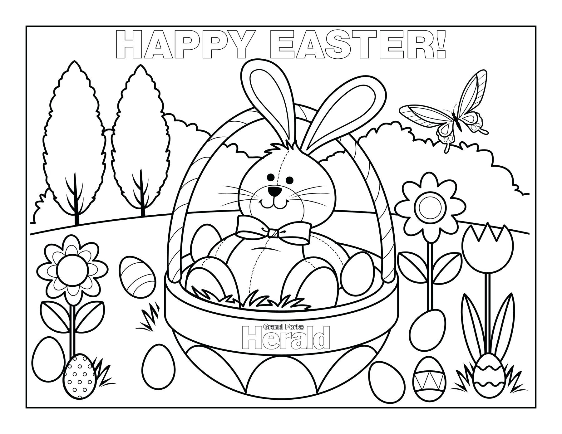 Realistic Bunny Coloring Pages