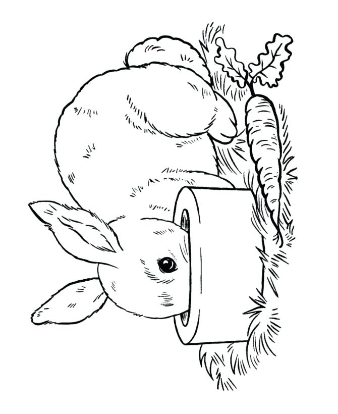 670x820 Bunny Coloring Pages Printable Collections Bunny Coloring Pages