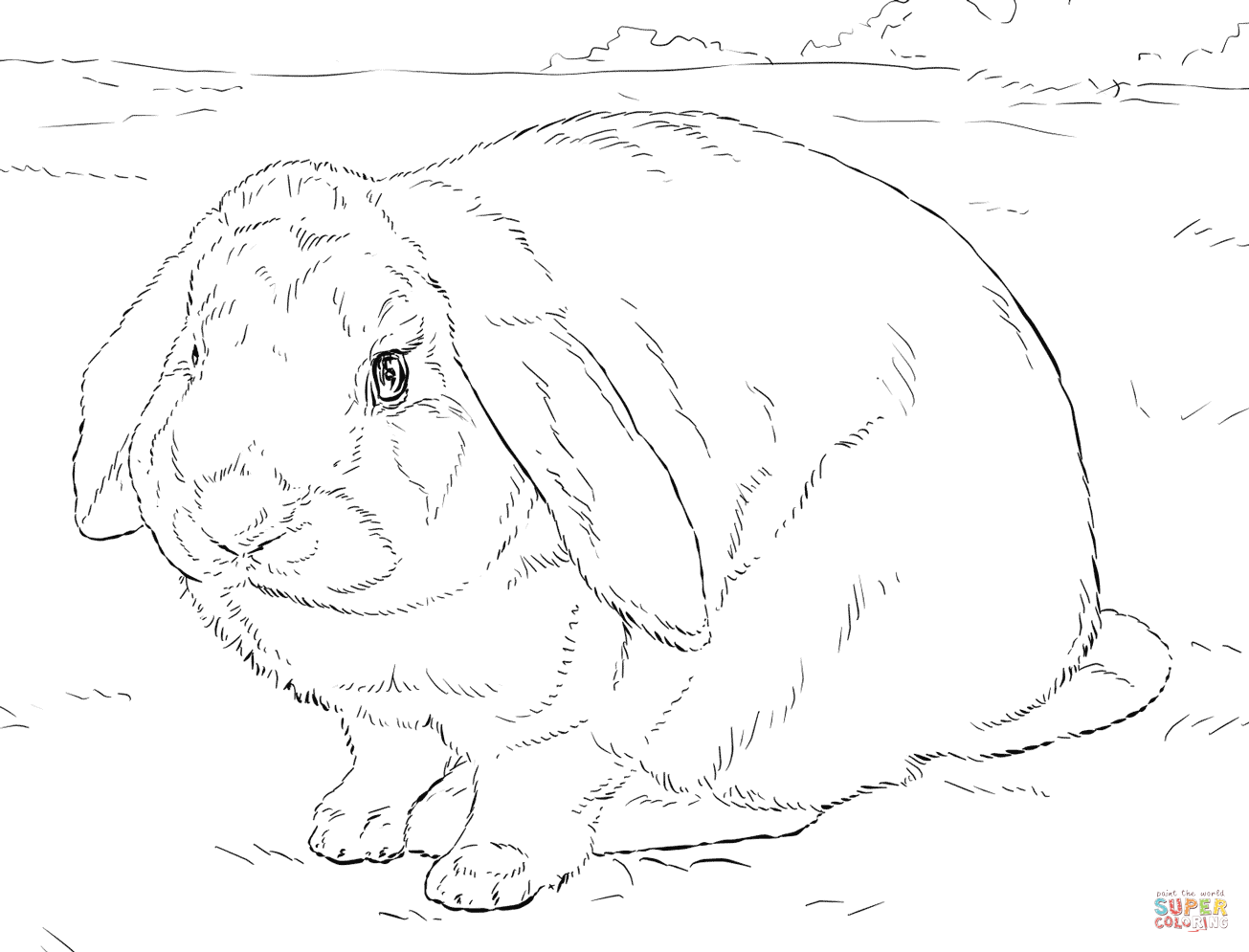 1305x995 Largest Realistic Bunny Coloring Pages Page