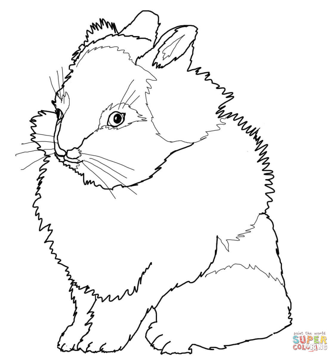 1120x1200 Simple Realistic Bunny Coloring Pages Rabbits