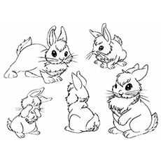 230x230 Top Free Printable Bunny Coloring Pages Online