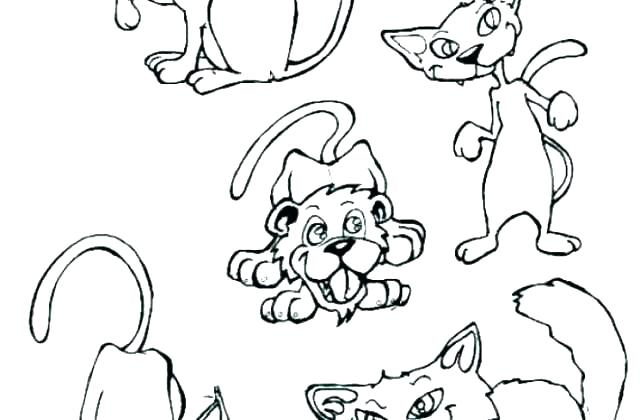 Realistic Cat Coloring Pages Printable at GetDrawings.com ...