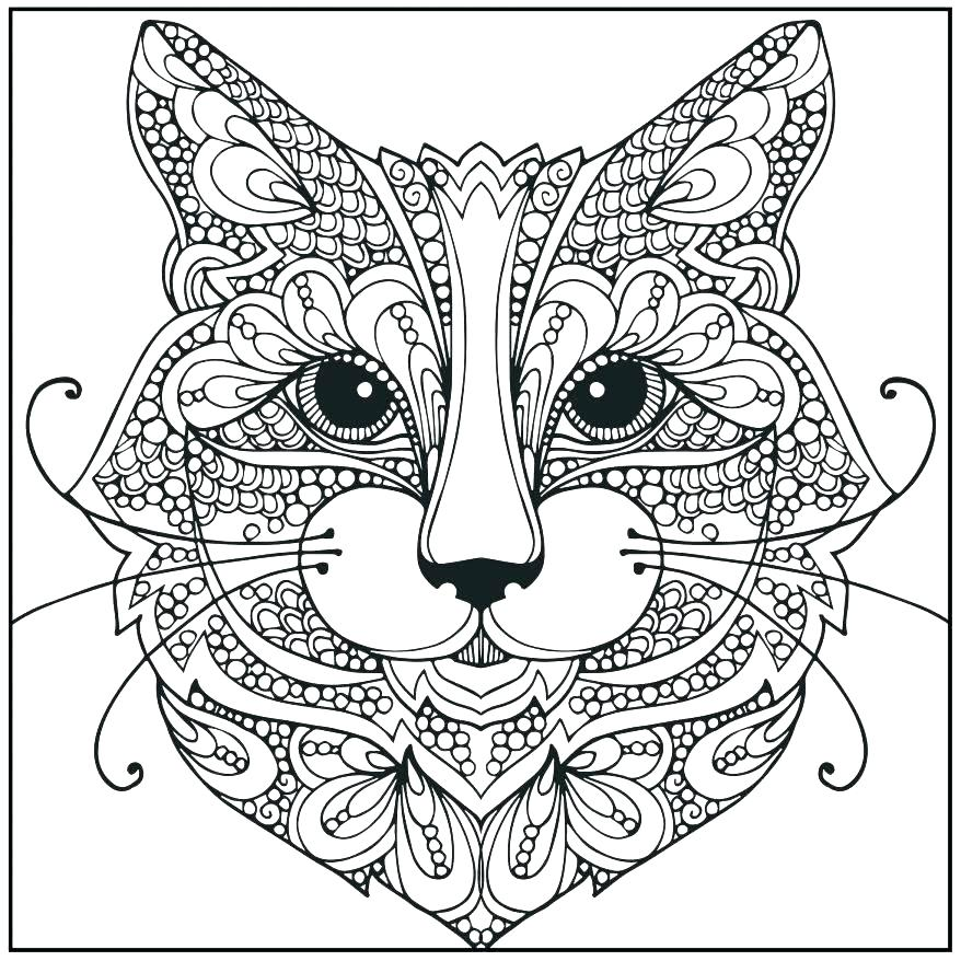 878x878 Realistic Cat Coloring Pages Realistic Cat Coloring Pages