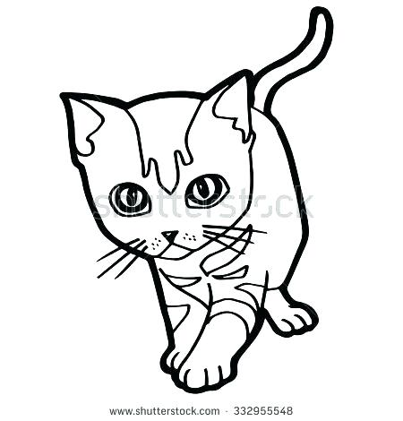 450x470 Tabby Cat Coloring Pages Realistic Cat Coloring Pages Cat Coloring