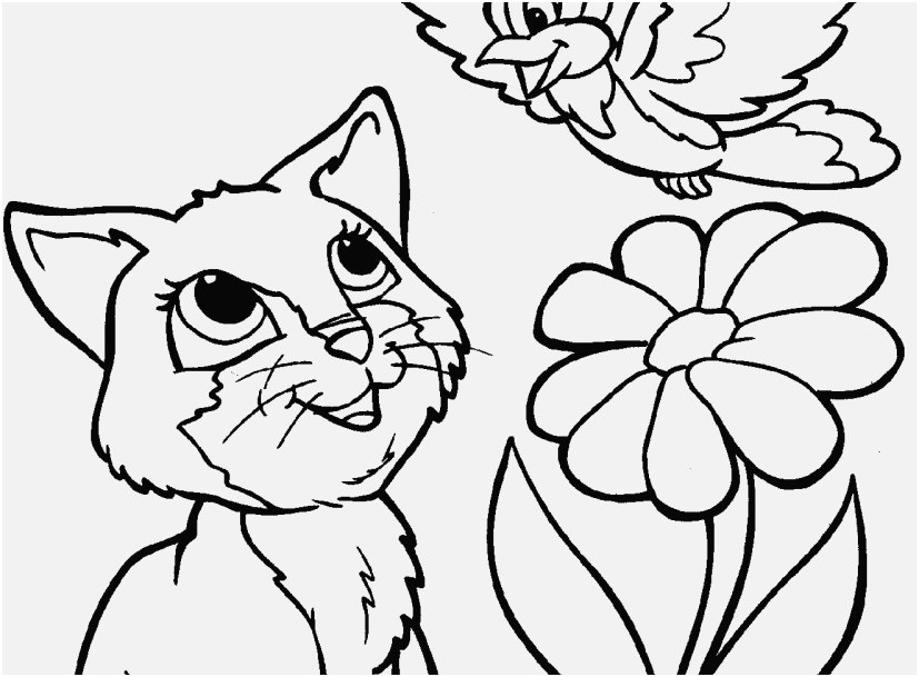 827x609 The Ideal Graphic Realistic Cat Coloring Pages The Latest