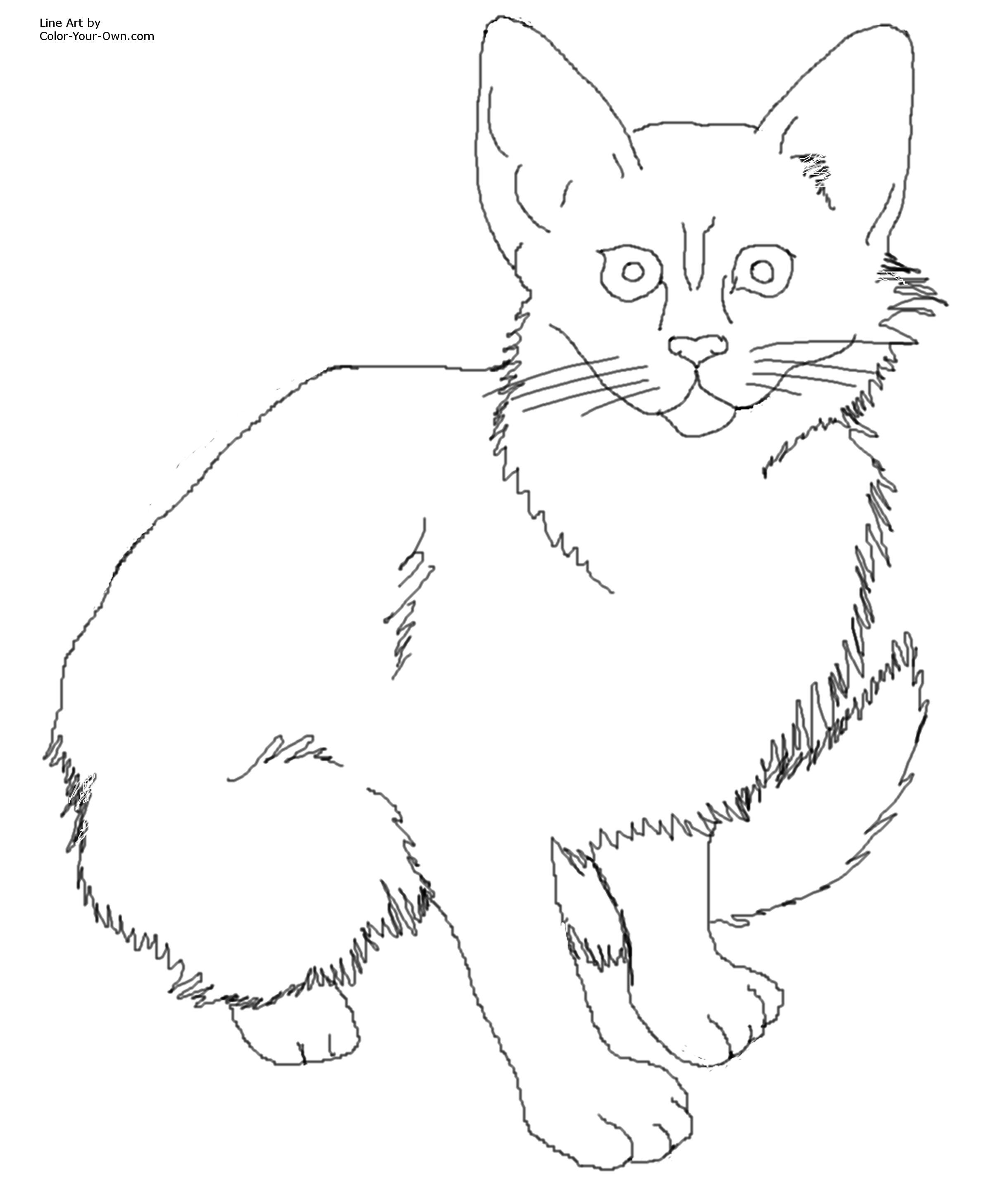 2400x2913 Cat Color Pages Printable Click Here For The X Printable