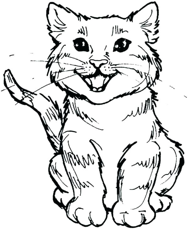 600x731 Cat Coloring Page Coloring Pages Cat Cute Cat Coloring Pages Color