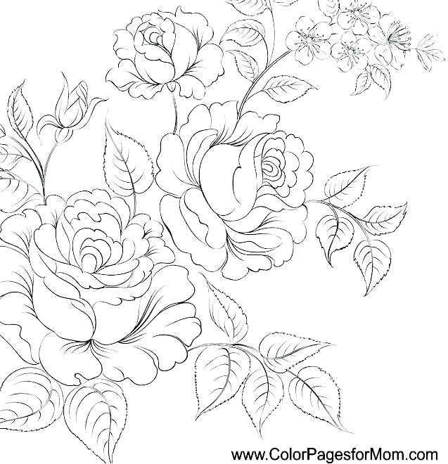 637x660 Flowers Coloring Pages Free Printable Realistic Flower Coloring