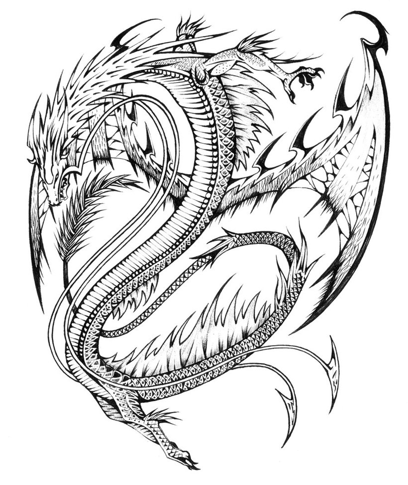 820x974 Realistic Dragon Coloring Pages