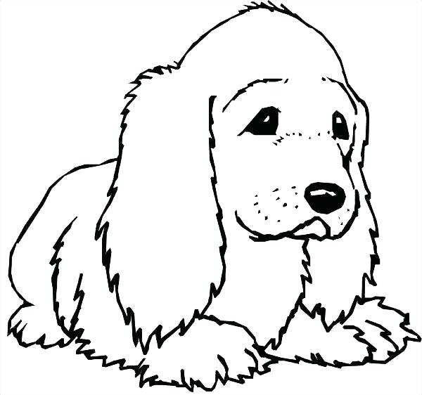 600x562 Free Printable Dog Coloring Pages Coloring Pictures Of Dog Free
