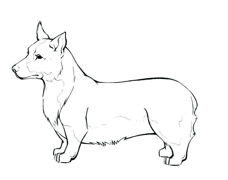 940x743 Hot Dog Coloring Page Hot Dog Coloring Page Dog Coloring Pages