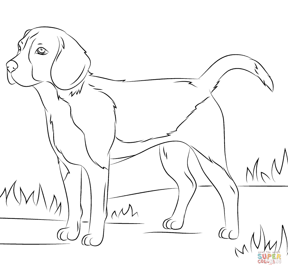 936x864 Adults Dog Coloring Page Pages For Online Hard Toddlers Cute Puppy
