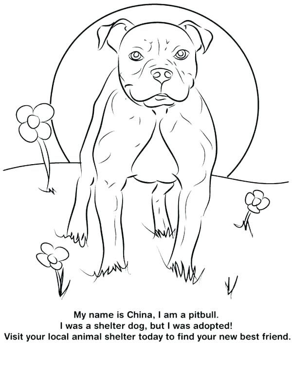600x776 Realistic Dog Coloring Pages Realistic Dog Coloring Pages Coloring