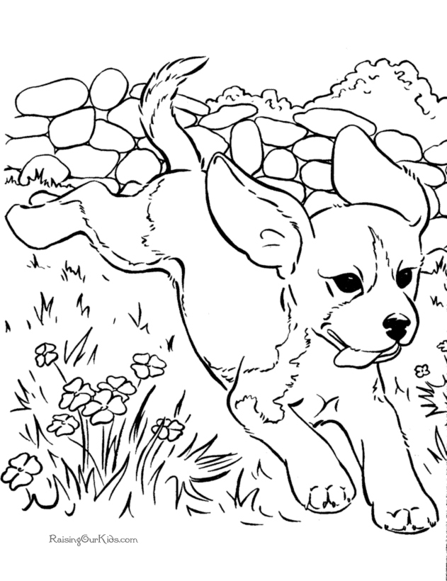 631x820 Dog Coloring Page Beautiful Realistic Coloring Pages Dogs Logo