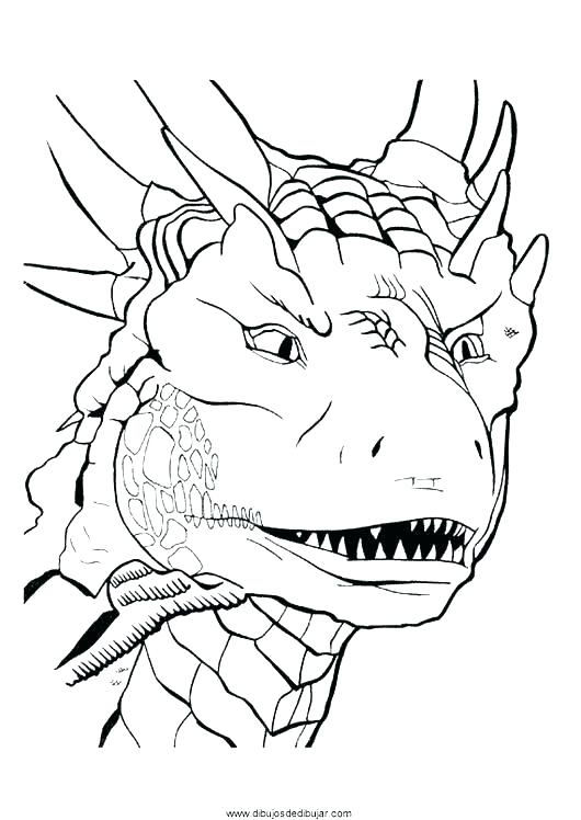 530x748 Dragon Head Coloring Page Realistic Dragon Coloring Pages
