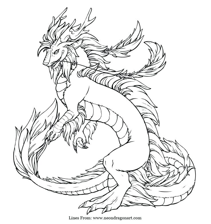 736x780 Realistic Dragon Coloring Pages
