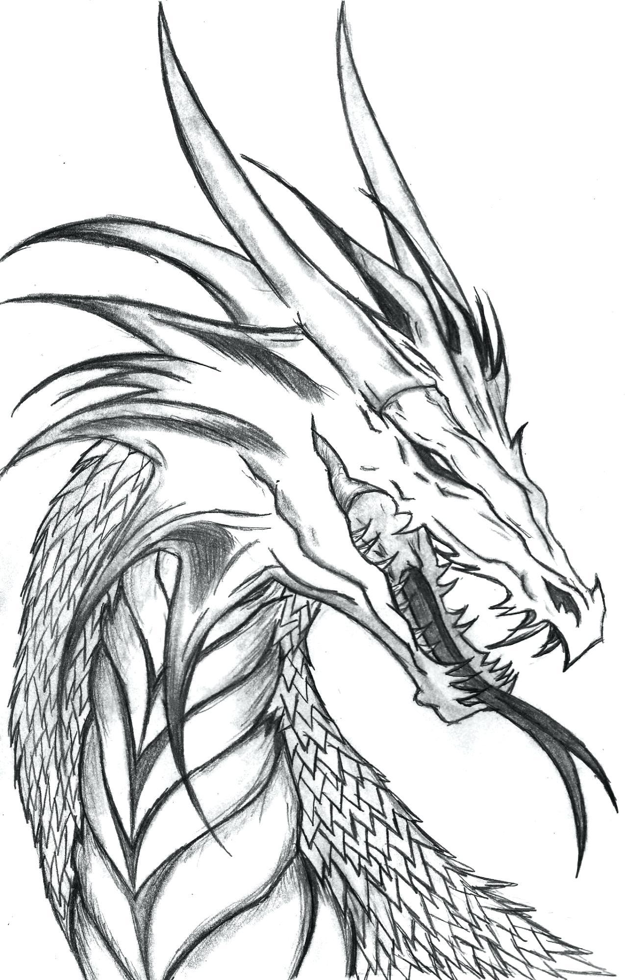 1275x2000 Unique Realistic Coloring Pages Of Dragons Rea