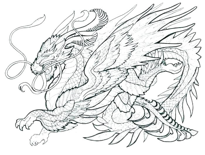 700x530 Dragon Coloring Pages Realistic