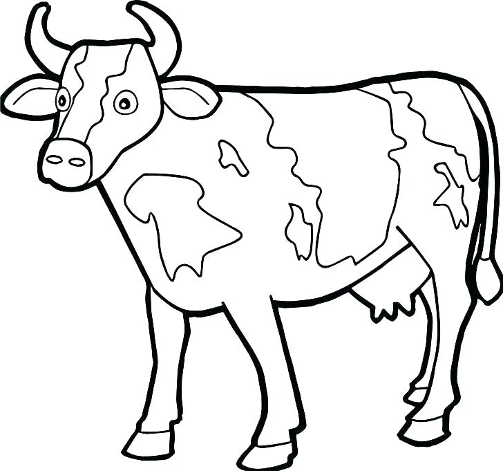 728x681 Coloring Pages Cow Cow Coloring Page Cow Coloring Pages
