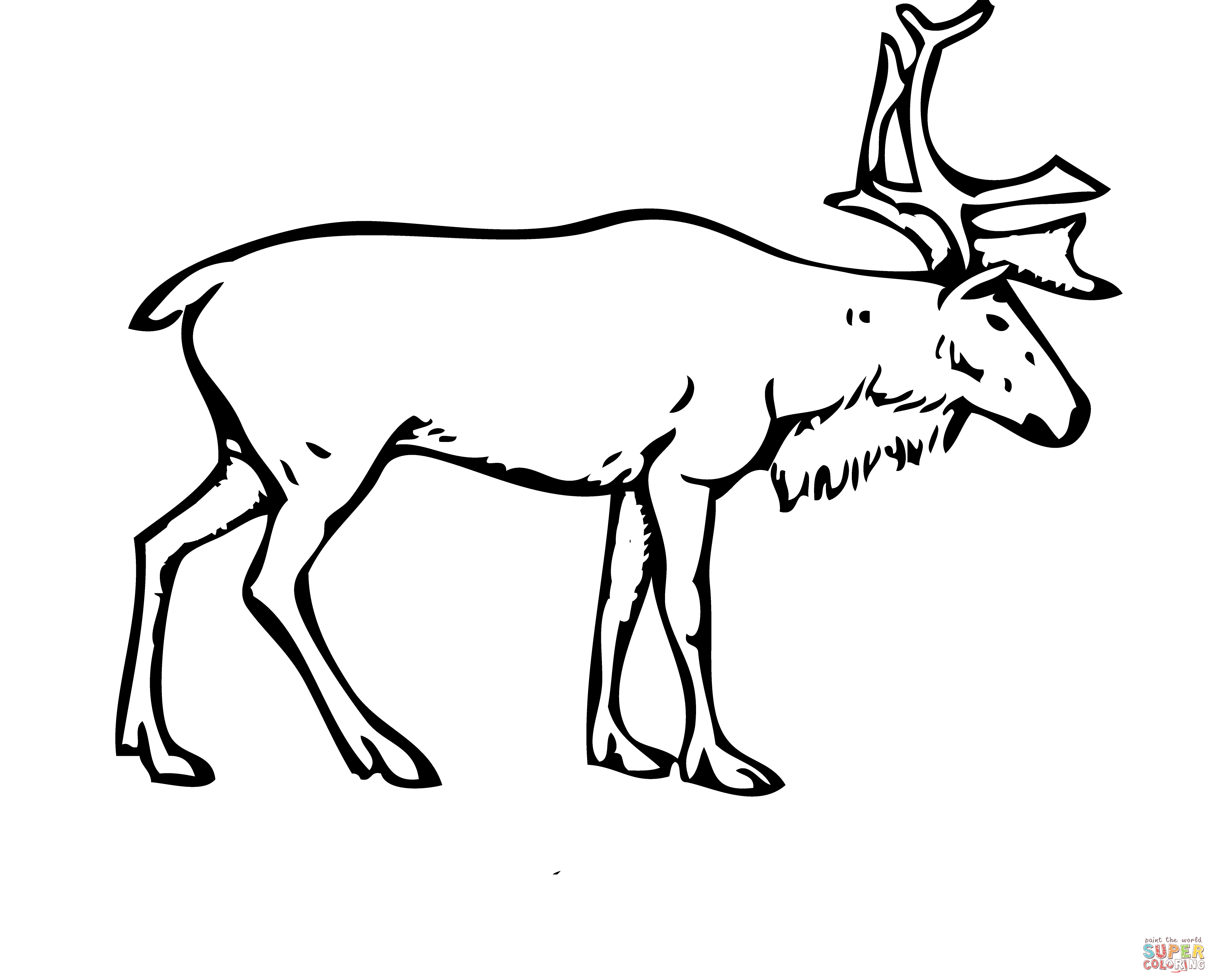 3597x2907 How To Draw A Realistic Reindeer Reindeer Deer Coloring Page