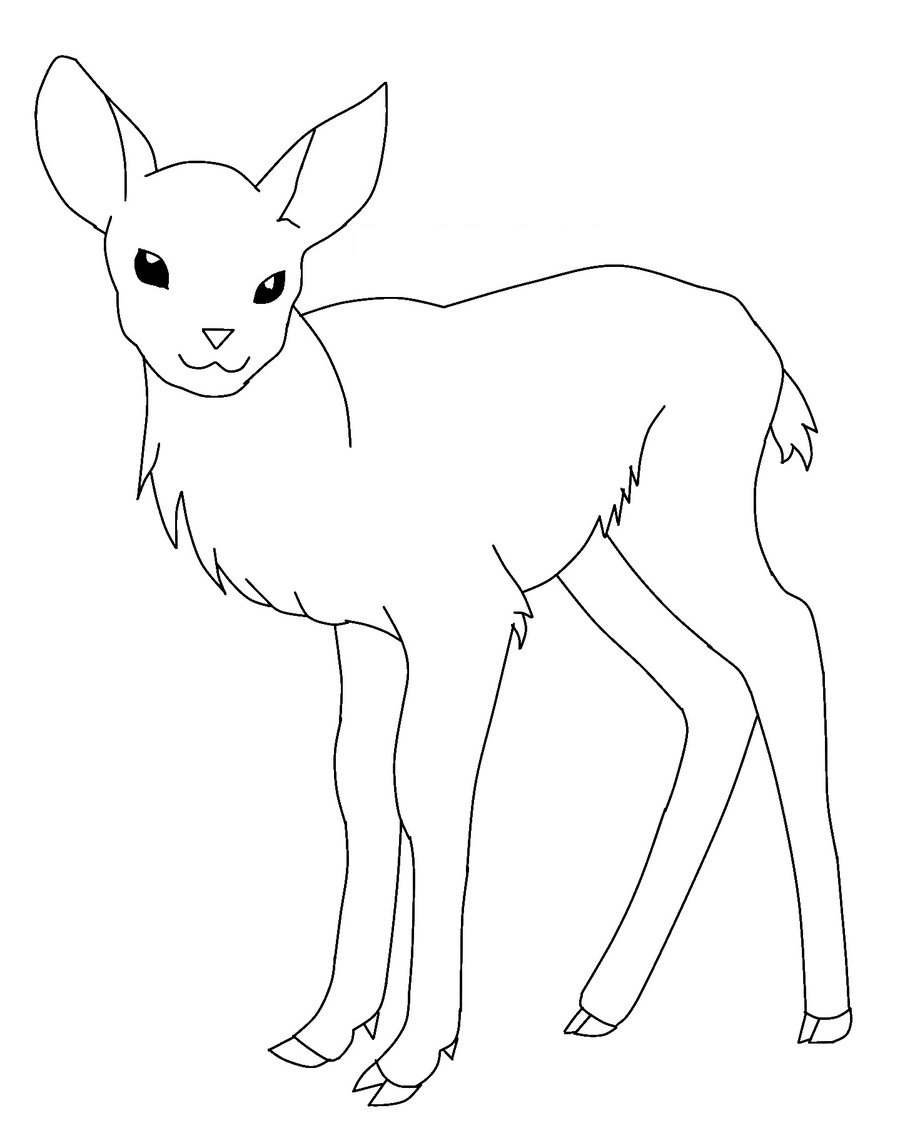 900x1123 Baby Deer Coloring Pages Page