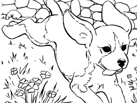 440x330 Free Dog Coloring Pages, Coloring Pages Printable Pictures
