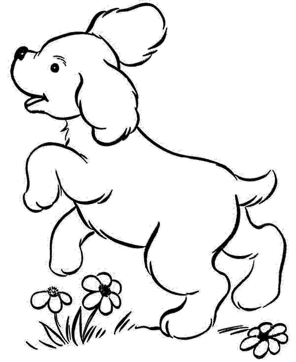 1000x1223 Realistic Dog Coloring Pages