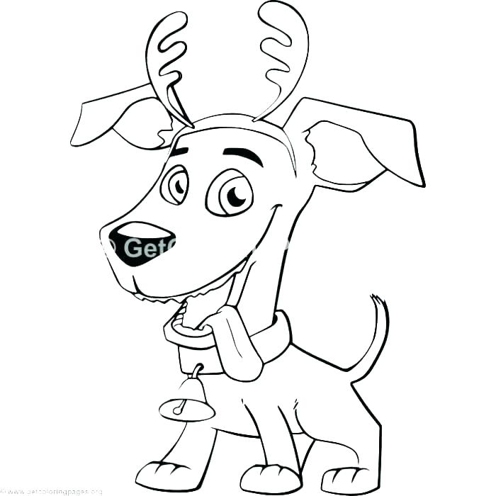 700x700 Cat Dog Coloring Pages Home Design Plan Dog And Cat Coloring Pages