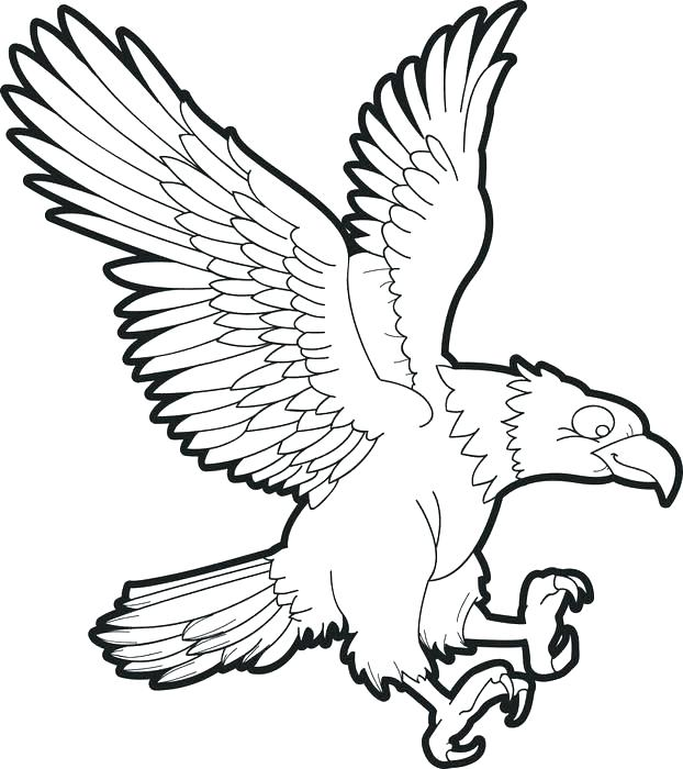 622x700 Bald Eagle Coloring Pages Eagle Colouring In Bald Eagle Coloring