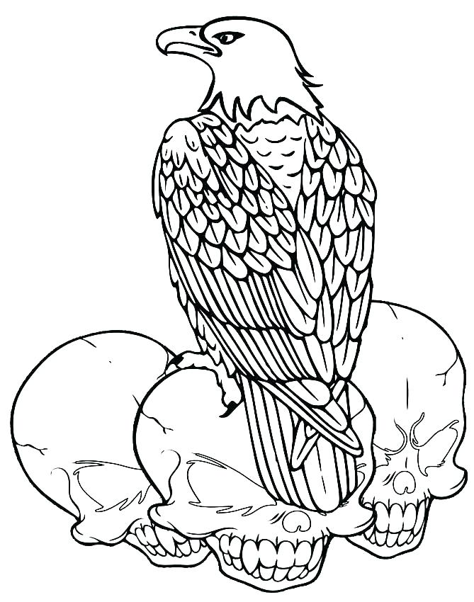 669x850 Coloring Pages Of Bald Eagles Bald Eagle Coloring Pages Bald Eagle