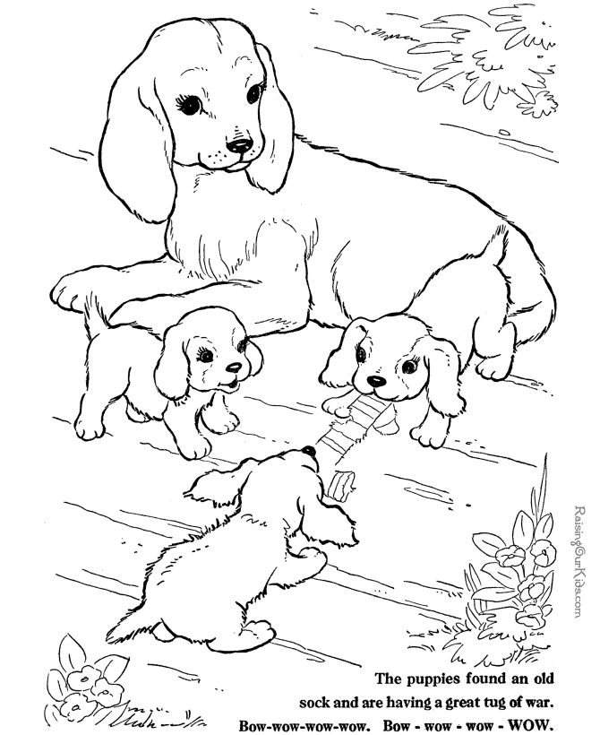 Realistic Farm Animal Coloring Pages